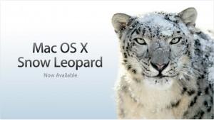 snowleopard-300x169