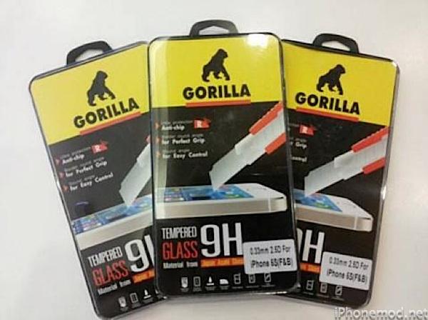 gorilla10291170_772537359445191_7946004874065190914_n