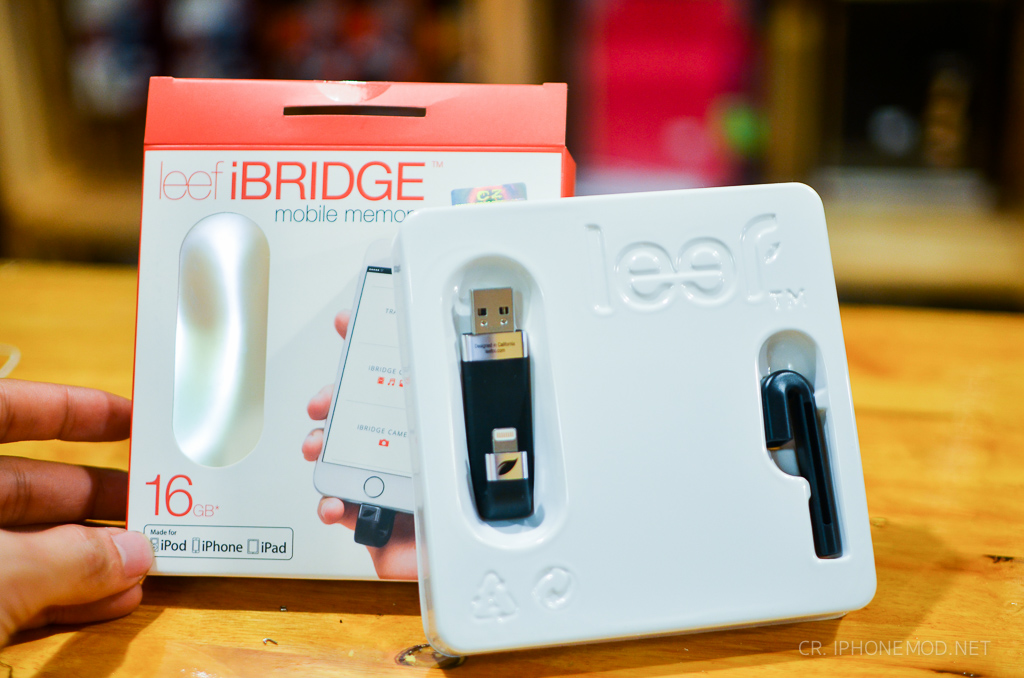 ibridge-review-2