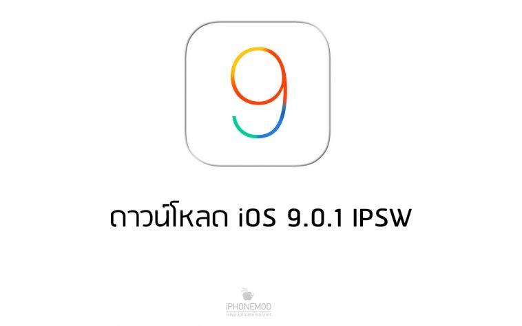 ipsw 9.0.1