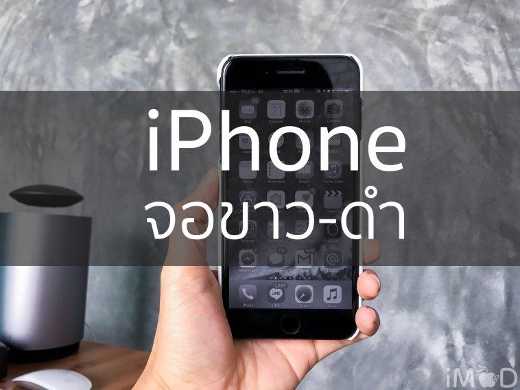 iphone-จอขาวดำ