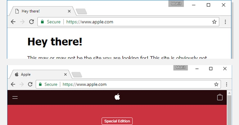 Fake URL