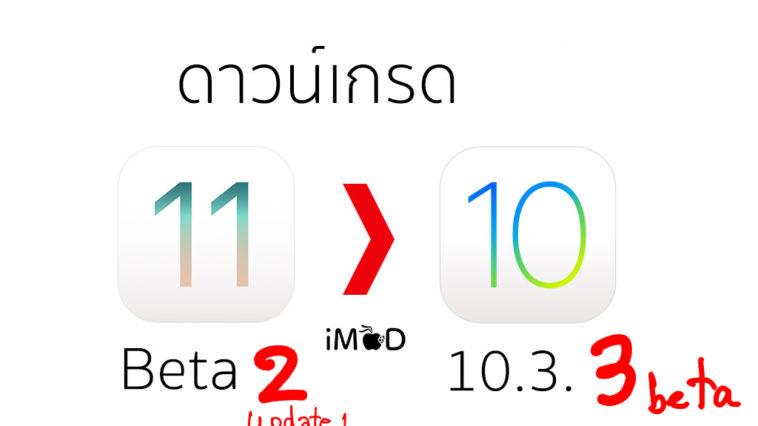 downgrade ios 11 beta 2 to ios 10.3.3