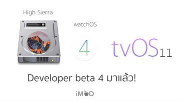 Developer Beta 4