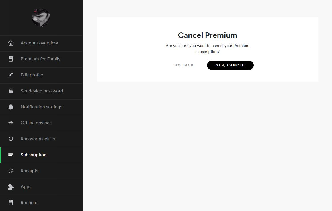 How Cancel Spotify Spotify Subscription 3