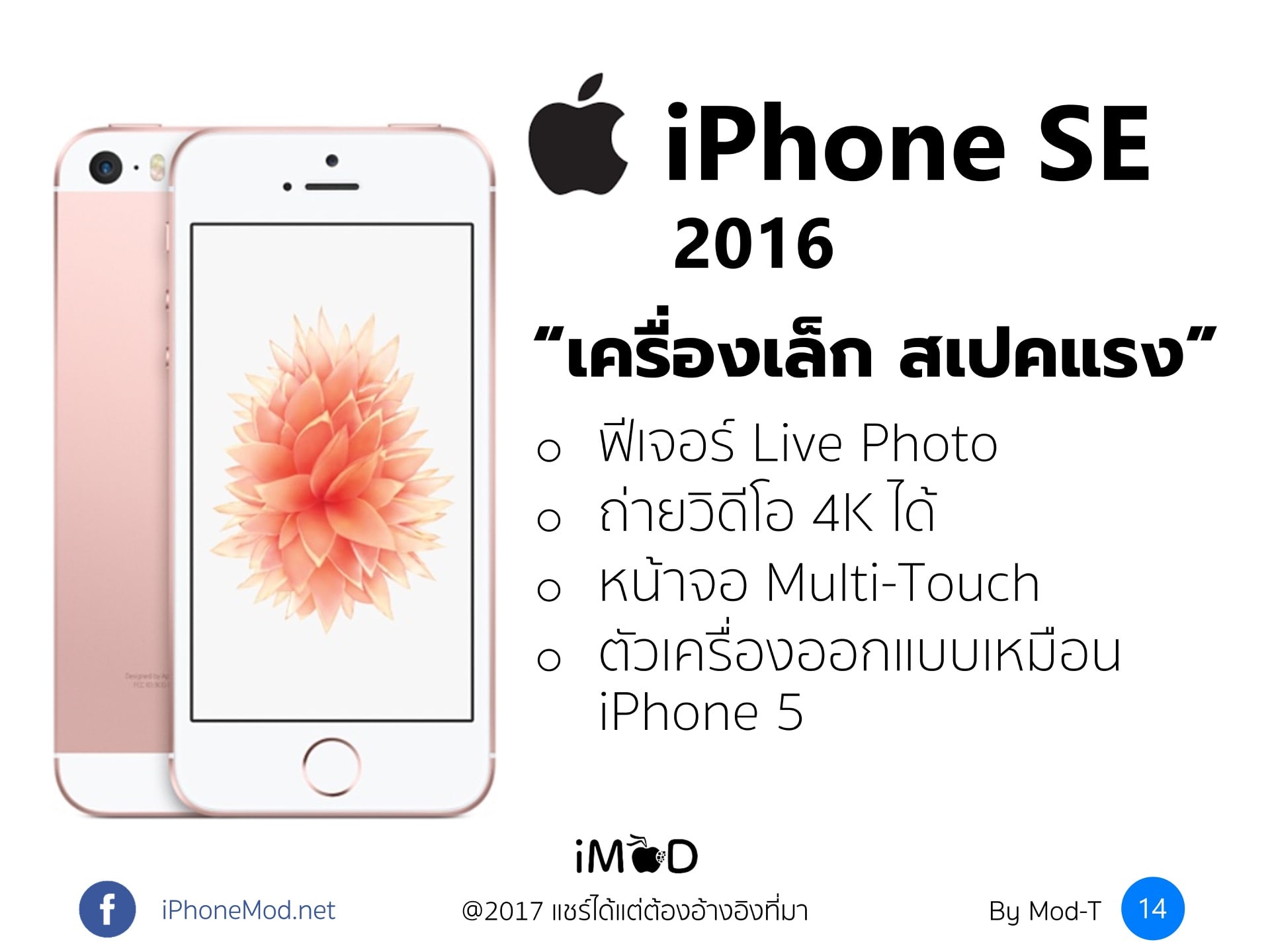 10th Years Iphone 14