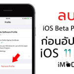 Ios11 0 1 Beta Profile