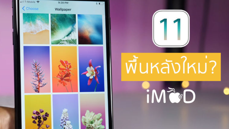 Ios11 Gm Wallpaper Leaks