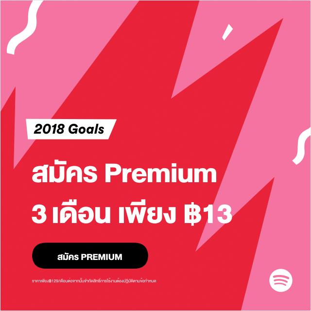 Spotify Year End Promo