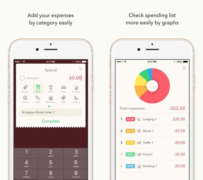 App Minibudgetpro Cover2