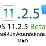 Ios 11 2 5 Beta 1 Seed