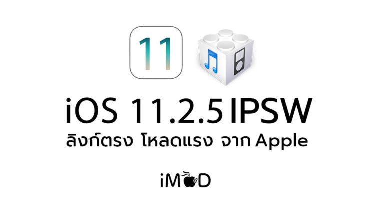 Ios11 2 5 Ipsw