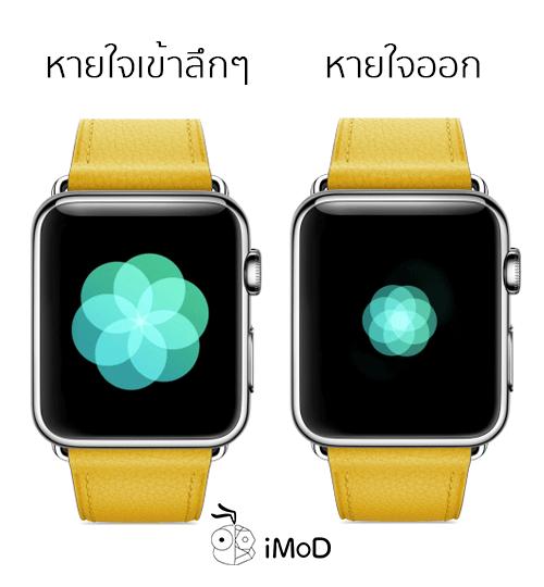 Apple Watch Breathe