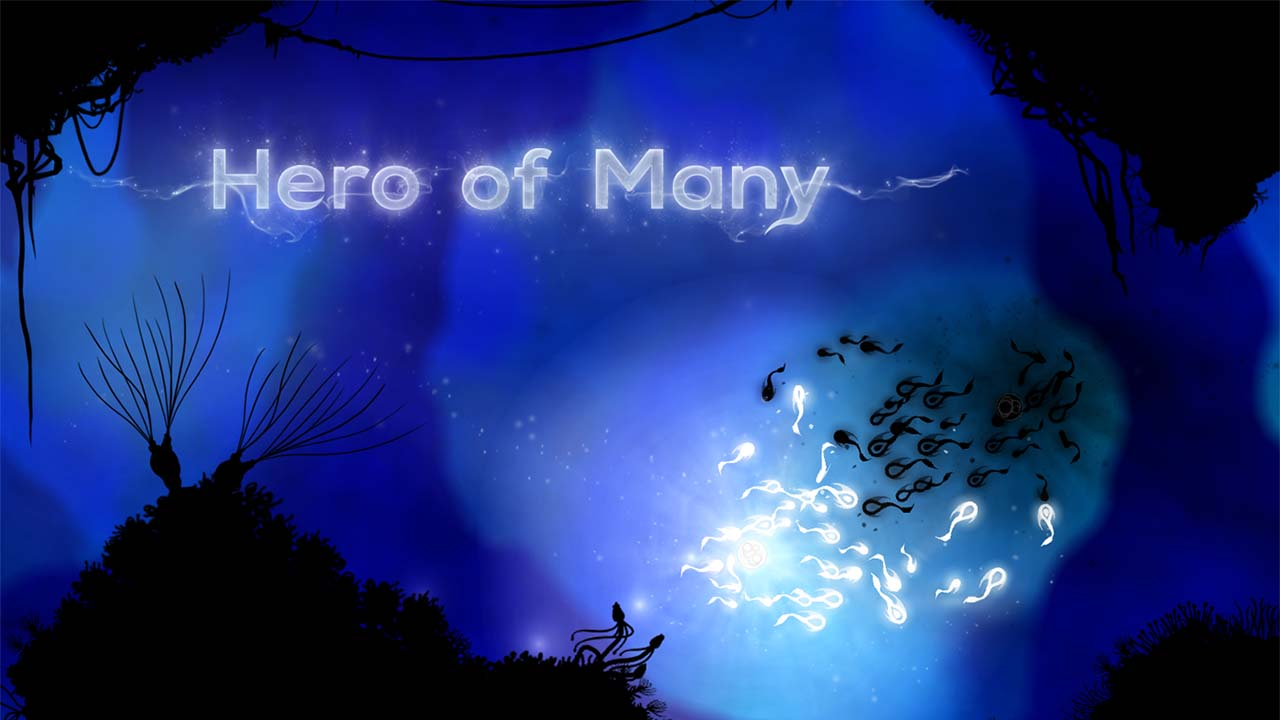 Game Hero Of Many Cover