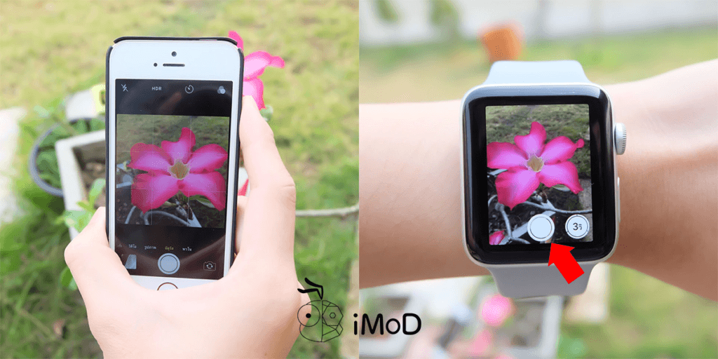 How To Use Apple Watch To Capture Like Remote Shutter 1