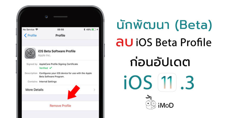 Ios 11 3 Remove Beta Profile Before Update