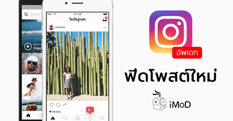Instagram New Feed Algorithm Update