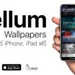 Vellum Wallapaper Cover