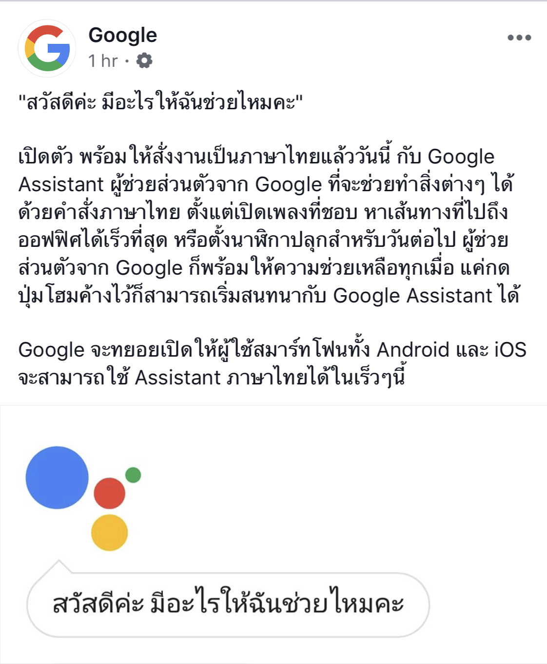 Google Assistant Th Support 2