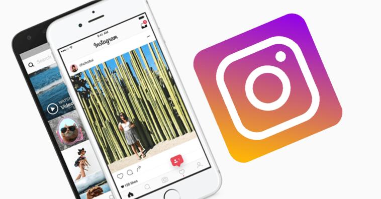 Instagram Feed Post New Algorithm