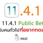 Ios 11 4 1 Public Beta 3