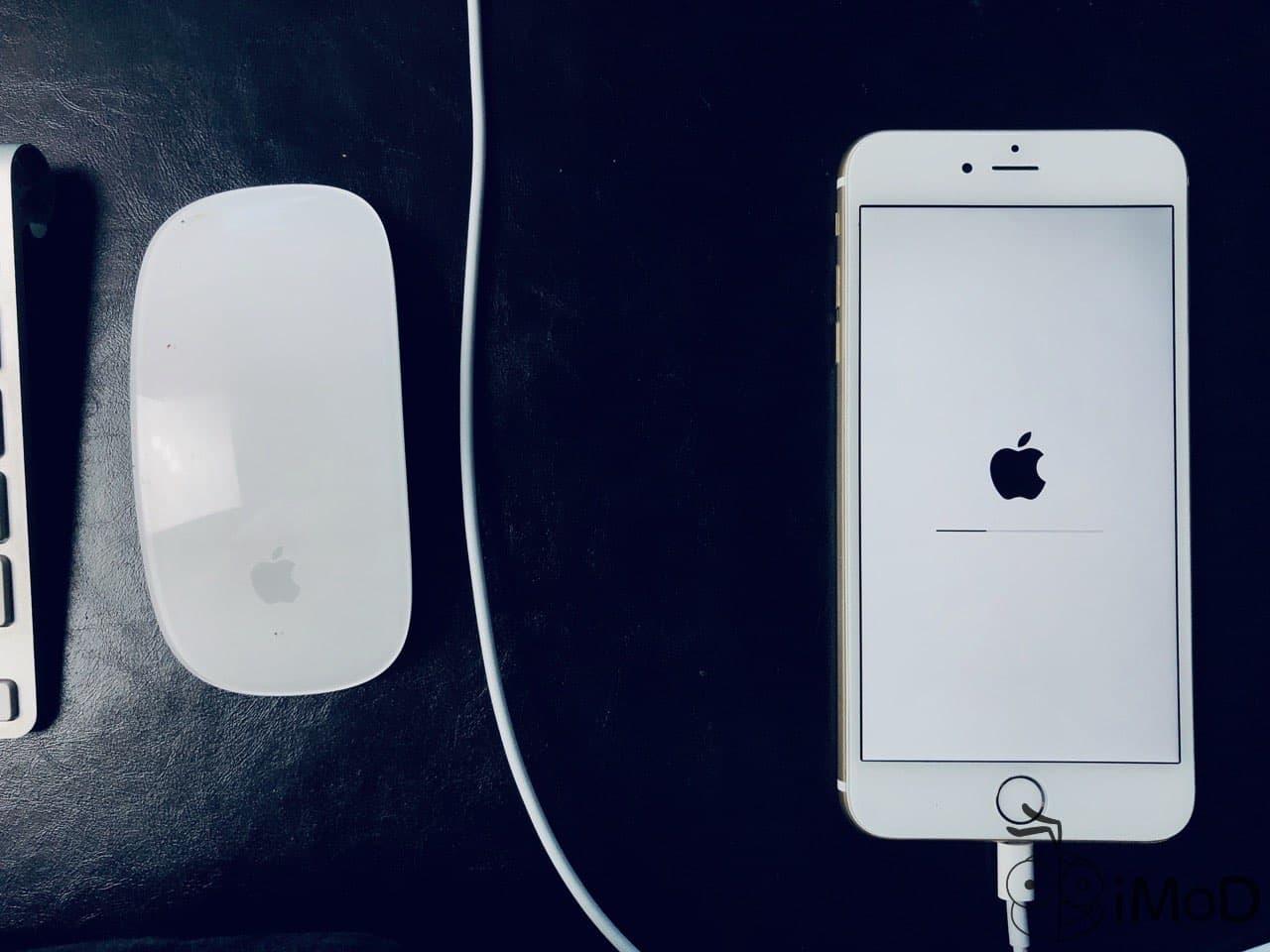Iphone Restoring