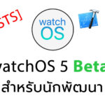 Watchos 5 Beta 1 Reposts