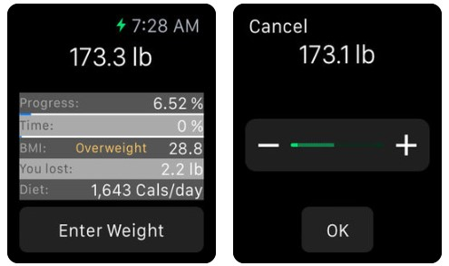 Count Calorie Monitoryouweight Apple Watch