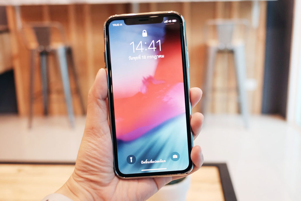 Gizmo Iphone Silky Case For Iphone X 11