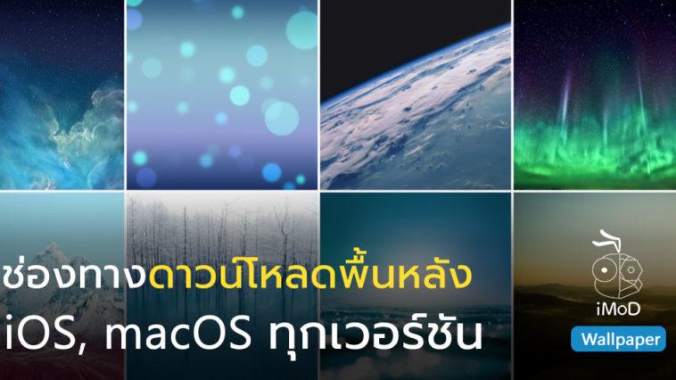 Ios Macos All Wallpaper Download Link