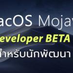 Macos Mojave Developer Beta 4 Seed