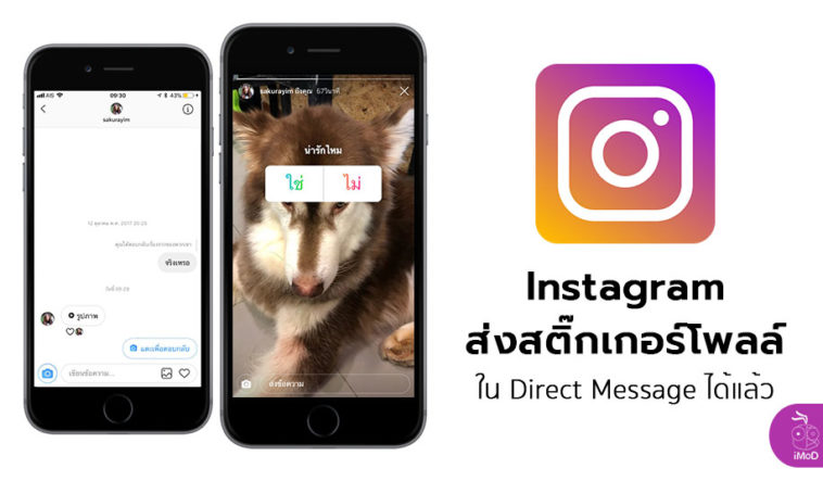 Instagram Can Send Poll Sticker In Direct Message