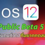 Ios 12 Public Beta 5 Seed