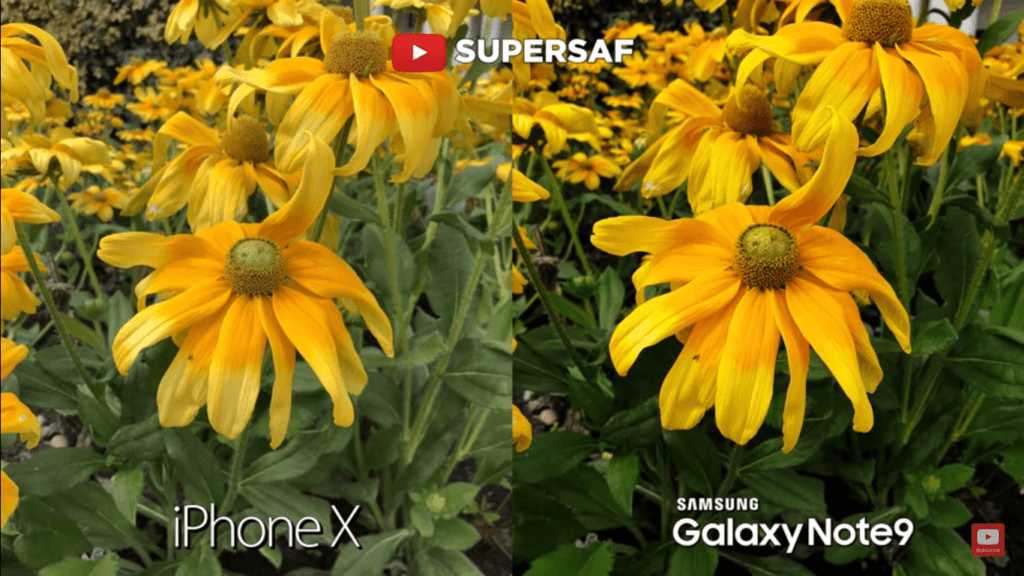 Iphone X Vs Galaxy Note 9 Camera Compare 13