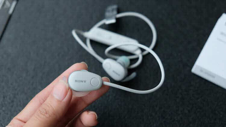 Sony 016