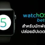 Watchos 5 Beta 8 Developer Seed Update