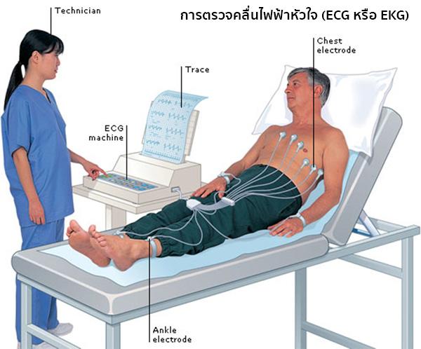 Ecg Ekg Heart Rate