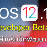 Ios 12 1 Developer Beta 1 Seed