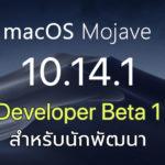 Macos Mojave 10 14 1 Developer Beta 1 Seed