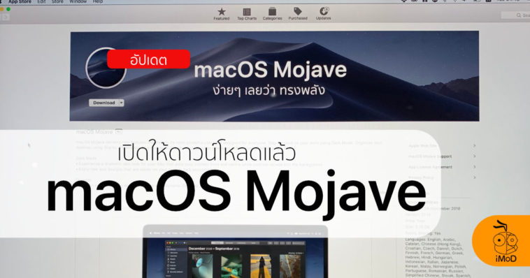 Mojave Released Cover