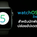 Watchos 5 1 Beta Developer Release