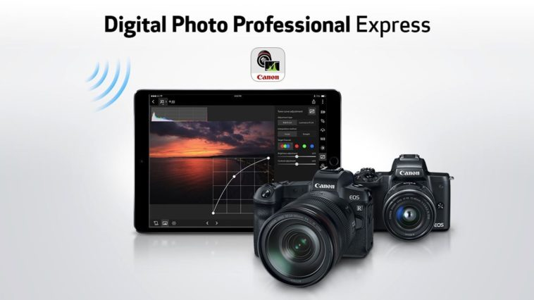 Digital Photo Professional Express Cover