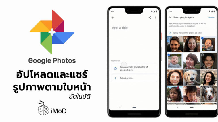 Google Photos Update Live Album Feature