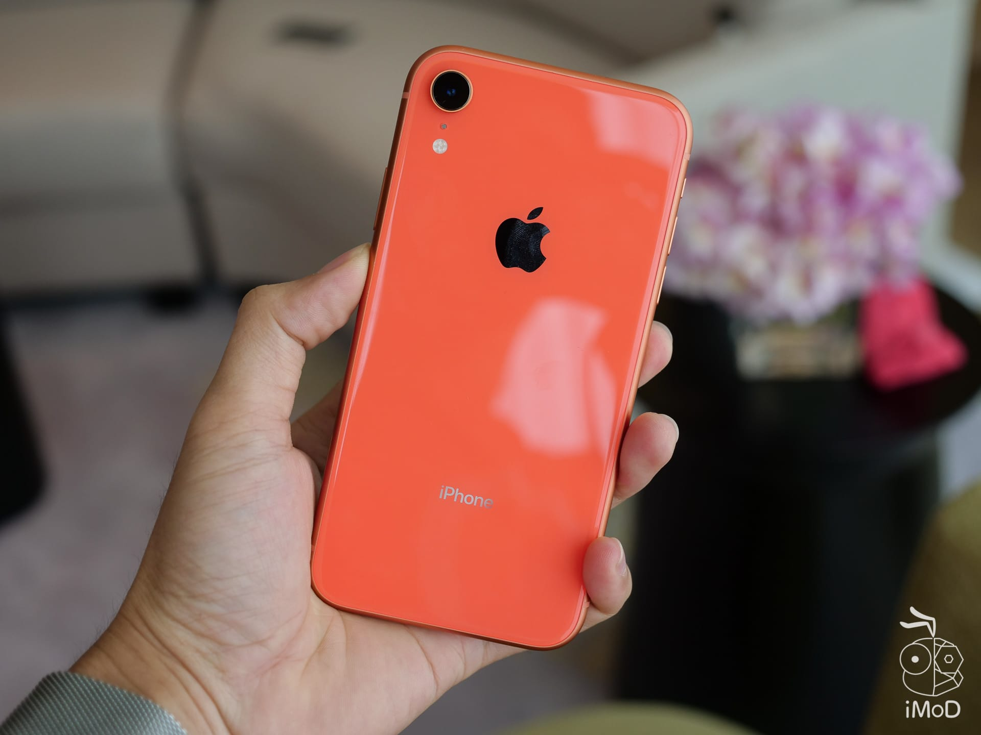 Iphone Xr Colors 1199143