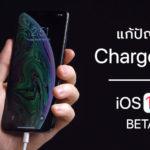 Ios 12 1 Developer Beta 2 Fix Chargegate