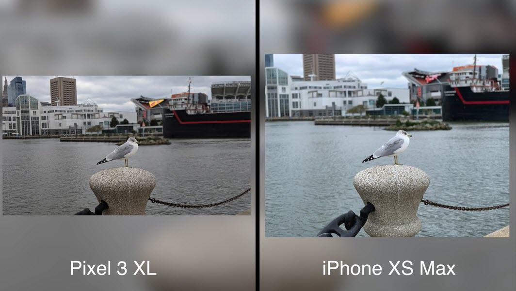 Iphone Xs Max Pixel 3 Xl Camera Test Macrumors Img 5