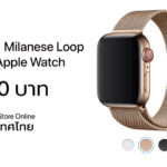 Milanese Loop For Apple Watch Series 4 Apple Store Online Th