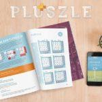 Game Pluszle Brain Logic Game Cover