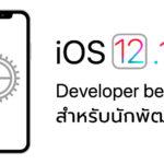 Ios 12 1 1 Developer Beta 1 Seed