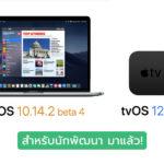 Macos 10 14 2 Beta 4 Tvos 12 1 1 Beta 4 Seed Cover
